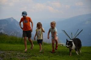 Alp-Tschingla-2019-015